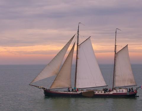 De bruine vloot